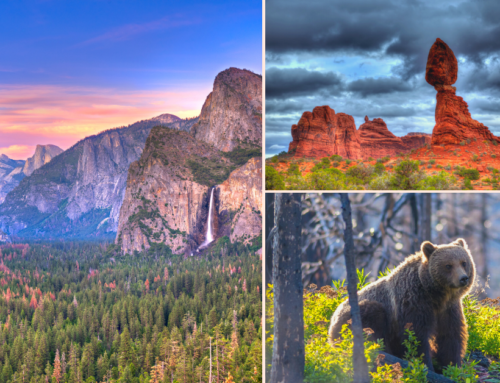 How To Plan a National Parks Family Trip